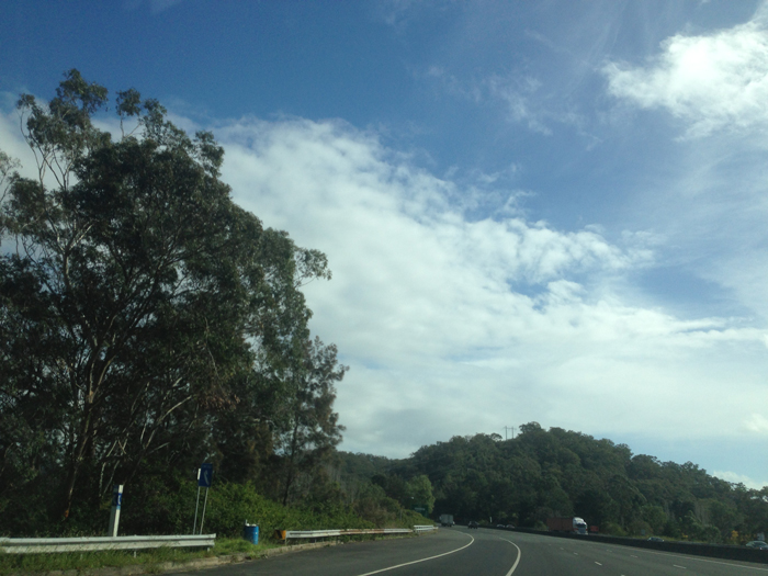 Peats-from-Freeway-2014-039-700