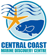 The Central Coast Marine Dicovery Centre Terrigal