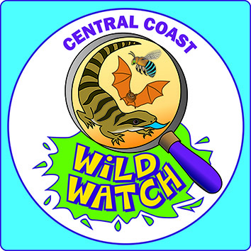 Wildwatch - Connecting Kids with Nature