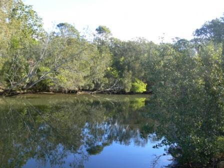 erina creek
